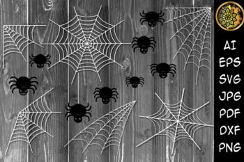 Spider Webs Worksheets Teaching Resources Teachers Pay Teachers