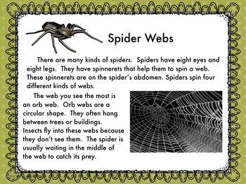 Spider Webs Informational Reading and Make a Web  STEM Challenge