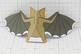 Halloween Vampire Bat Display Decoration Activity - 3D Paper Craft