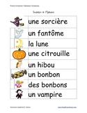Halloween Vocabulary / Flashcards (FRENCH)