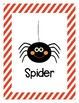 Halloween Theme Words and Pictures- Word Wall