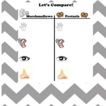 Hallway Behavior: Marshmallow Toes