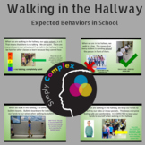 Hallway Expected Behavior