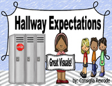 Hallway Expectations, Rules, Reminders  (Visuals to support PBIS)