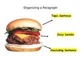 Hamburger Paragraph Powerpoint - Organizing Writing
