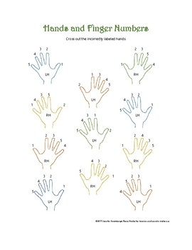 Hand and Piano Fingers Worksheet