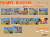 Handa's Suprise Lesson Bundle - Smartboard