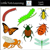 Insects Clip Art - Bugs Clip Art