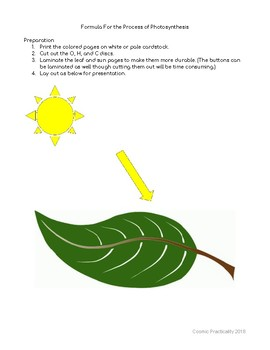 Hands On Formula for Photosynthesis
