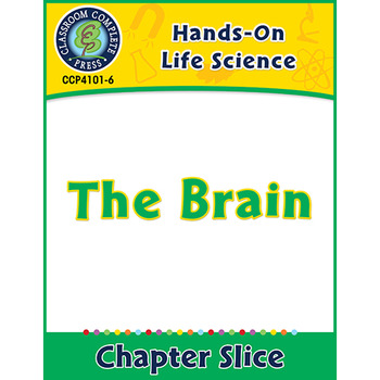 Hands-On STEAM - Life Science: The Brain Gr. 1-5