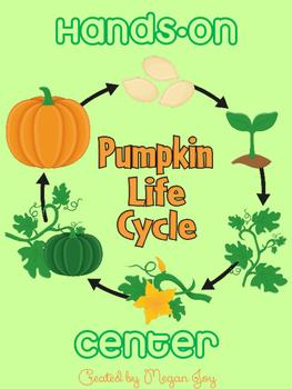 Pumpkin Life Cycle Center