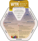 Hands -On Resource for Writing to Respond to Text and Tests