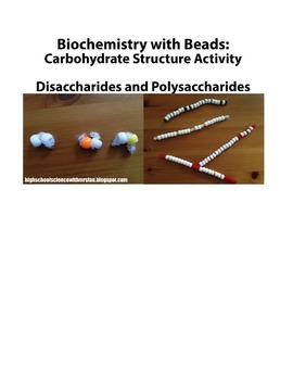 activity bundle four macromolecules for high school biology biochemistry activity bundle four macromolecules for high school biology