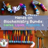Biochemistry Activity Bundle with Four Macromolecules for High School Biology