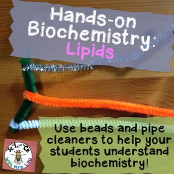 Hands-on Biochemistry: Lipid Structure with Beads