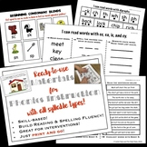 Hands-on Reading & Spelling Materials for Phonics Interven