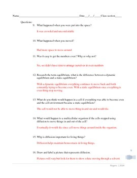 Hands on diffusion activities PDF format