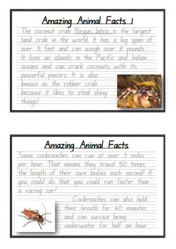 Handwriting Big Bundle! Amazing Animal Facts in Foundation Manuscript