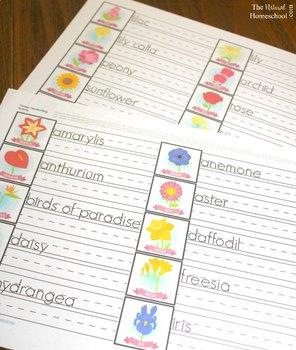 Handwriting Flower Activities for Kids {Montessori-Inspired Printable}