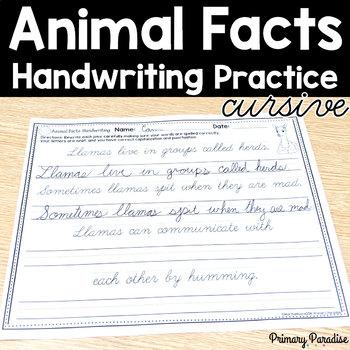 Cursive Handwriting Practice Animal Facts NO PREP: Grades 1,2,&3