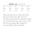 Handwriting Task Cards: ss nn rr