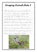 Handwriting Worksheet Bundle: Amazing Animal Facts in D'Nealian Cursive