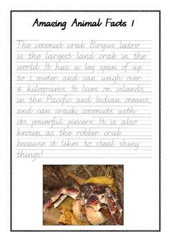 Handwriting Worksheet Bundle: Amazing Animal Facts in Foundation Manuscript