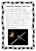 Handwriting Worksheet Bundle: Spectacular Space Facts - Fo
