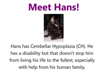 Hans: Overcoming Obstacles