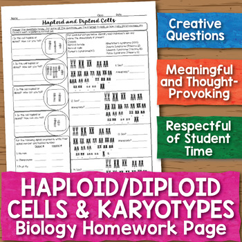 Haploid Diploid Cells Karyotypes Biology Homework Worksheet Tpt