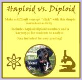 Haploid vs. Diploid Worksheet