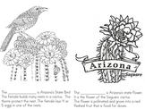 Happy Birthday Arizona!!!
