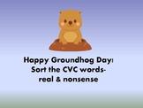 Happy Groundhog Day CVC/Nonsense Word Sort
