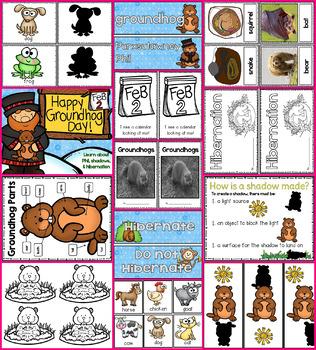 Happy Groundhog's Day!! Groundhog's Day, Hibernation, and Shadows