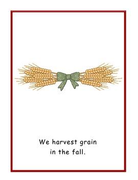 Happy Harvest Read Aloud