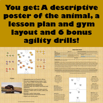 PE Game - Happy Hungry Hippos: Agility Skills Physical Education Game!