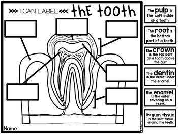 Happy Teeth {Dental Health Craft and More in English and Spanish}