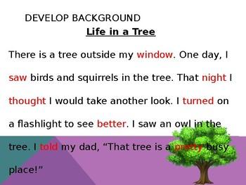 Harcourt Houghton Mifflin Journeys 1st grade The Tree Power Point