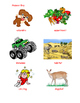 Harcourt Storytown Rainforest Babies Vocabulary Review
