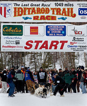 Harcourt Trophies 5th Grade RAFT Iditarod Dream