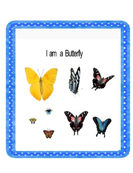 Harcourt Trophies First Grade I am a Butterfly
