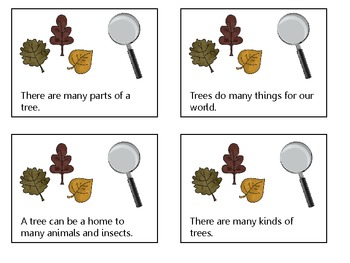 Harcourt Trophies~ How to Be a Nature Detective story activities