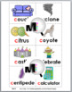 Hard and Soft C Sorting Activity & Worksheets & Posters –