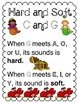 Hard and Soft C and G Bundle