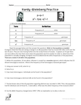 31 The Hardy Weinberg Equation Worksheet Answers ...