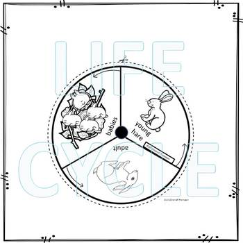 Hare (Life Cycle Spinner)