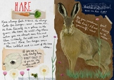 FREE download Hare poster illustration about facts and soc