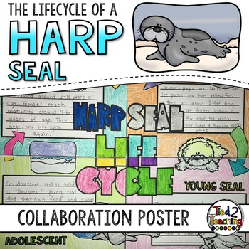Harp Seal Life Cycle Activity: Collaborative Research Poster