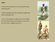 Harriet Tubman - Power Point life story, history, underground railroad pictures