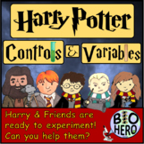 Harry Potter Controls and Variables Practice